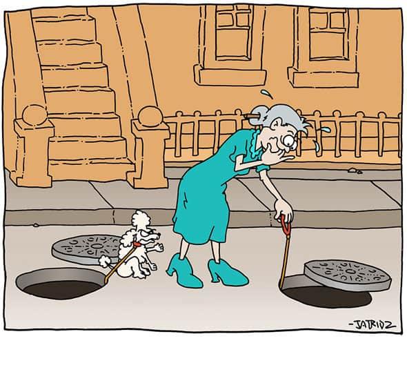 manhole poodle